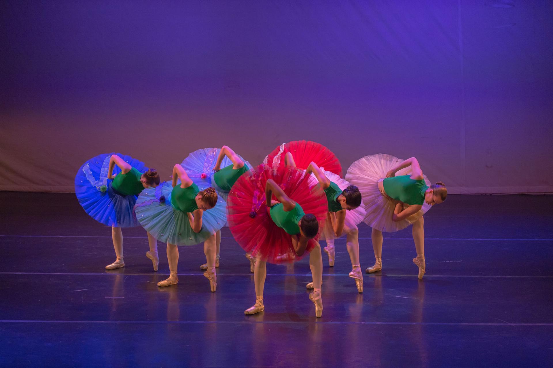 Ballet des ameriques tropiques atrium de fleurs