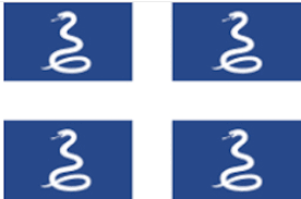 drapeau aux serpents