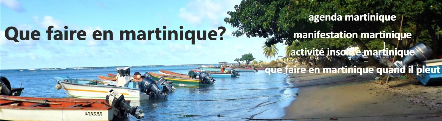 que faire en martinique
